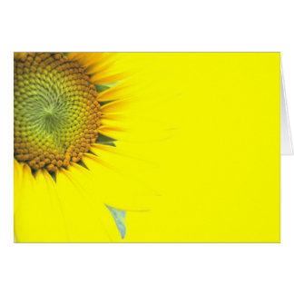 Beautiful Bright Yellow sunflower Greeting Card
