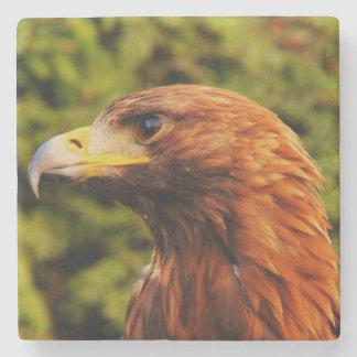 Beautiful brown eagle portrait stone beverage coaster