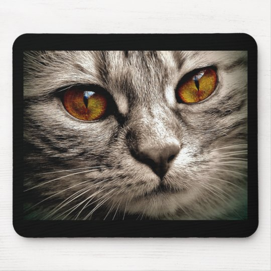 Beautiful Brown Eyed Grey Tiger Cat Mouse Mat