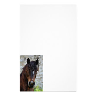 Beautiful Brown Horse Customised Stationery