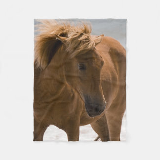 Beautiful Brown Horse Fleece Blanket