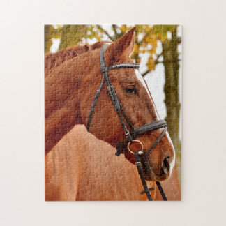 Beautiful Brown Horse Jigsaw Puzzle