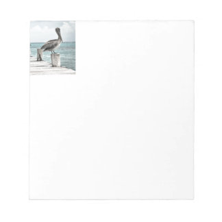 Beautiful Brown Pelicans and Blue Water Notepad
