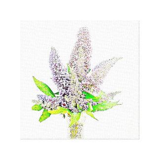 Beautiful buddleia canvas print