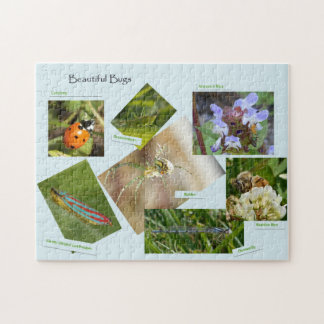 Beautiful Bugs Photo Puzzle with Gift Box