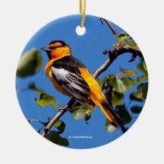 Beautiful Bullock's Oriole the Pear Tree Christmas Ornament
