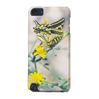 Beautiful Butterfly and Small Yellow Flowers iPod Touch (5th Generation) Cover