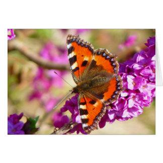 Beautiful Butterfly - Little Fox Butterfly Greeting Card