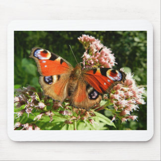 Beautiful Butterfly on Flowers Mousemat