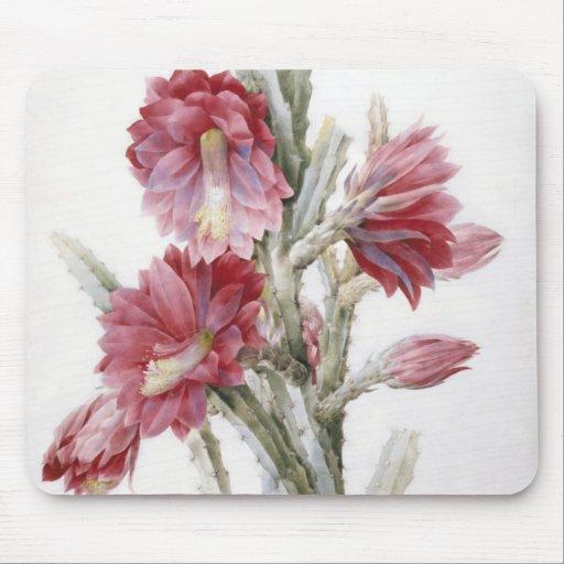 Beautiful Cactus Bloom Watercolor Art Mousepad
