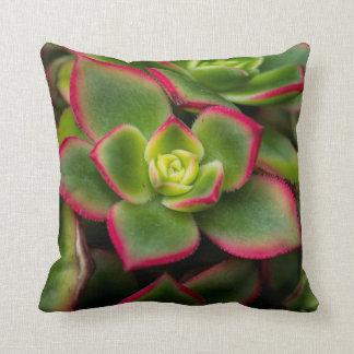 Beautiful Cactus Macro Throw Pillow