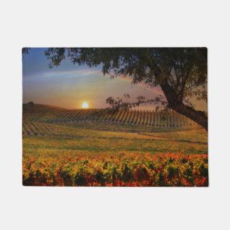 Beautiful California Rainbow Vineyard Door Mat