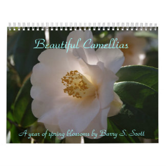 Beautiful Camellias calendar