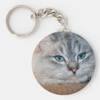 Beautiful cat blue eyes basic round button key ring