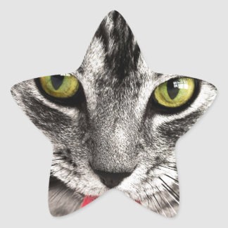 beautiful cat feline eyes and tongue lick star sticker