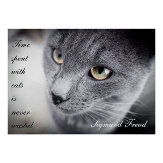 Beautiful cat quote poster - Motivational