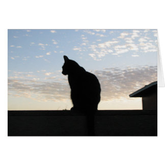 Beautiful cat silhouette at sunset card