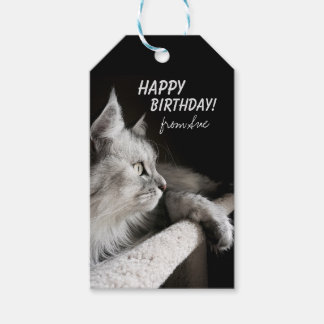 Beautiful Cat-Themed Birthday Custom Gift Tags