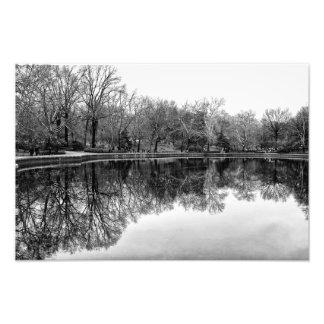 Beautiful Central Park Landscape in Black & White Photo Art