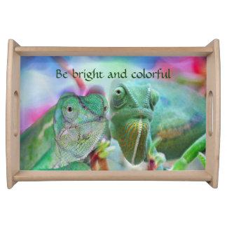 Beautiful chameleons serving tray