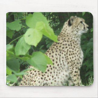 Beautiful cheetah mouse mat