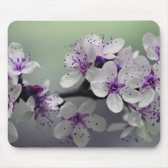 Beautiful Cherry Blossom Mouse Mat