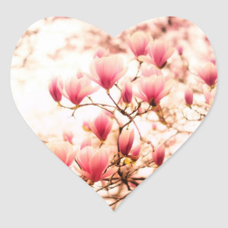 Beautiful Cherry Blossoms - Central Park Heart Sticker