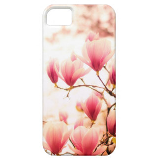 Beautiful Cherry Blossoms - Central Park iPhone 5 Cover