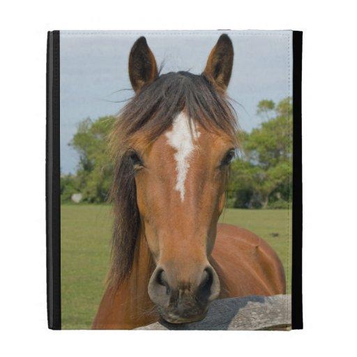 Beautiful chestnut horse head photo ipad case