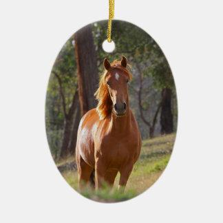 Beautiful chestnut horse photo portrait, gift ceramic oval decoration