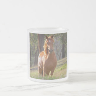 Beautiful chestnut horse photo portrait, gift frosted glass mug