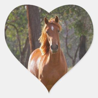 Beautiful chestnut horse photo portrait, gift heart sticker