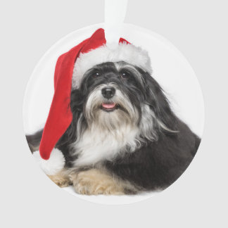 Beautiful Christmas Havanese Dog With Santa Hat Ornament