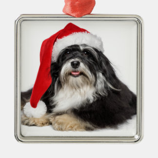 Beautiful Christmas Havanese Dog With Santa Hat Silver-Colored Square Decoration