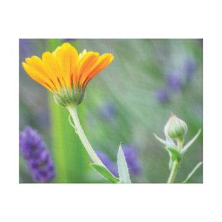 Beautiful close-up photo orange & purple flowers canvas print