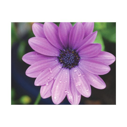 Beautiful close-up photo purple flower on green canvas