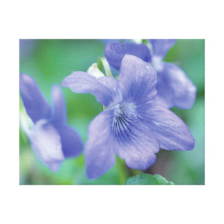 Beautiful close-up photo purple flower on green canvas print