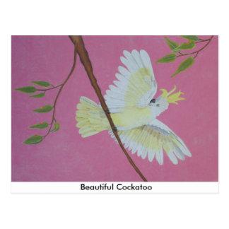Beautiful Cockatoo Postcard