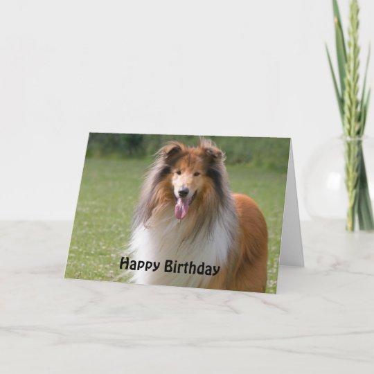 border collie birthday cards  zazzle uk