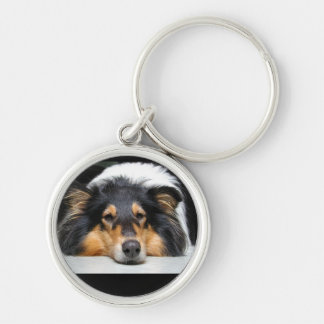 Beautiful Collie dog nose tri color keychain, gift Silver-Colored Round Key Ring