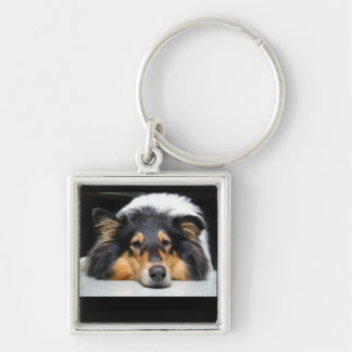Beautiful Collie dog nose tri color keychain, gift Silver-Colored Square Key Ring