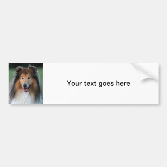 Beautiful Collie dog portrait bumper sticker, gift Bumper