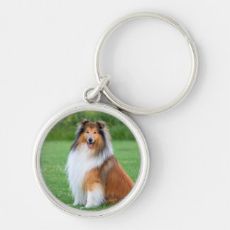 Beautiful Collie dog portrait keychain, gift idea Silver-Colored Round Key Ring