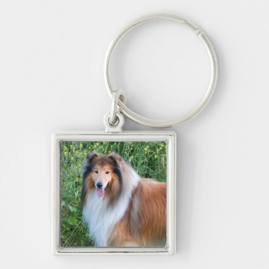 Beautiful Collie dog portrait keychain, gift idea Key