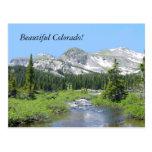 Beautiful Colorado Postcards