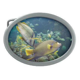 Beautiful Colourful Yellow and Blue Ocean Fish Belt Buckles