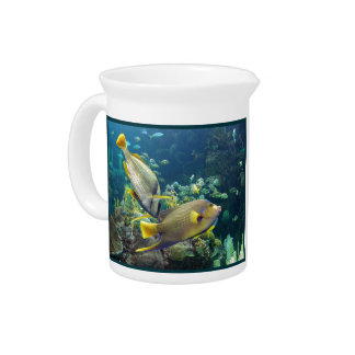 Beautiful Colourful Yellow and Blue Ocean Fish Pitcher