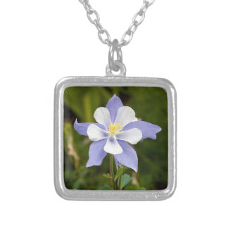 Beautiful Columbine Silver Plated Necklace