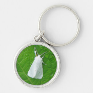 Beautiful contrast of a white moth on a green leaf Silver-Colored round key ring