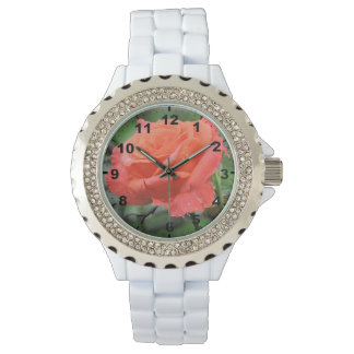 Beautiful Coral Rose Flower with Raindrops Wristwatches